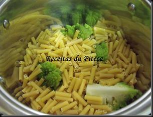 Macarrão com bróculos