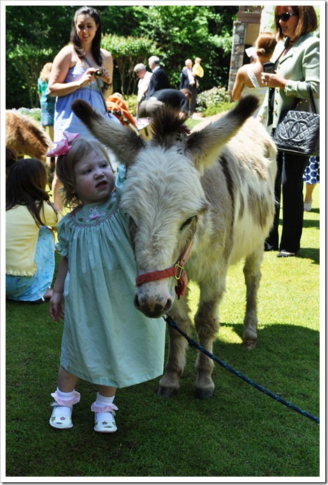 ec donkey