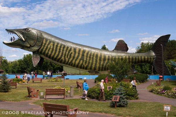 Выше: Гигантская Рыба (Giant Muskie), Хэйворд, штат Висконсин, США.