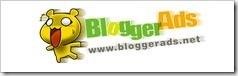 BloggerAds218x56B3