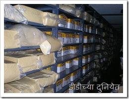 Cheese storage शीतगृहात साठवलेले चीज