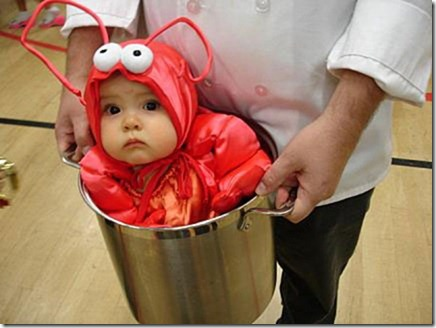 baby-lobster