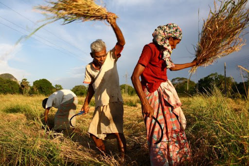 Climate Change: A Development Challenge