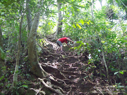 Buruwisan Old And Lansones Falls Wandering Bliss