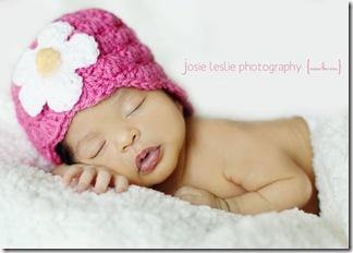 Josie 3