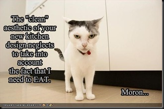 funny-pictures-your-cat-disapproves-of-your-new-kitchen-design
