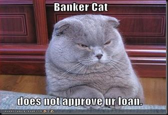 funny-pictures-banker-cat