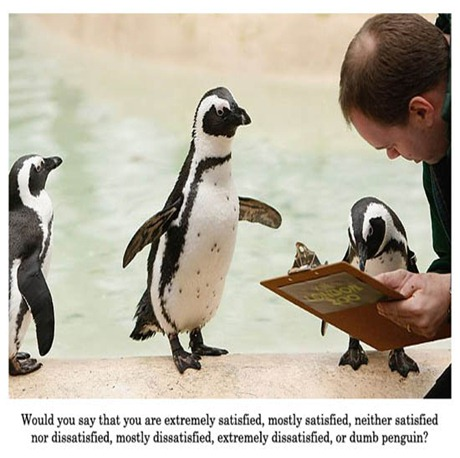 penguinopinion
