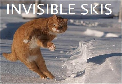 invisibleskis