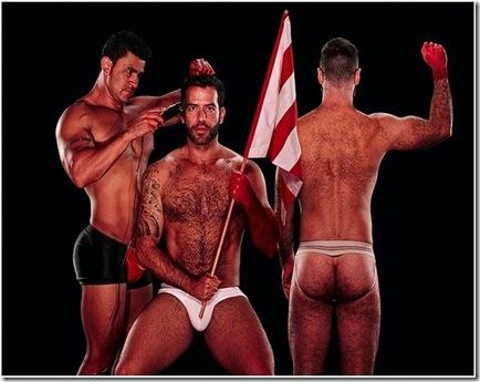 gay bear7