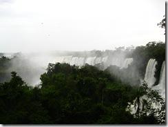Iguazu 006