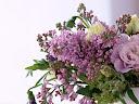 موسوعة رائعة من الورود Flowers-wallpaper%20%2812%29