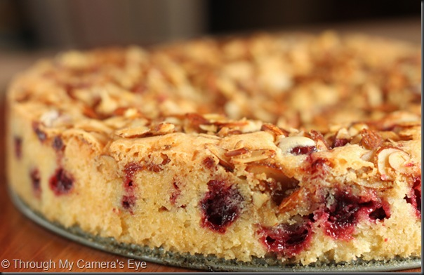 cranberry-almond-cake