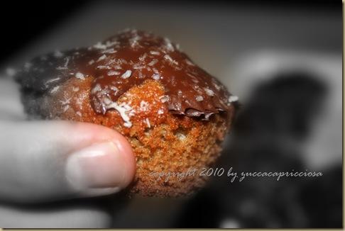 muffins cioccomirtillo