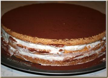 Torta crema di latte e cacao5