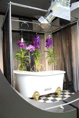 Serra Orchidee al Keukenhof