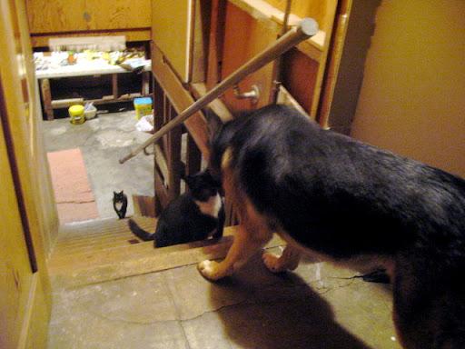 装修前-地下室楼梯间