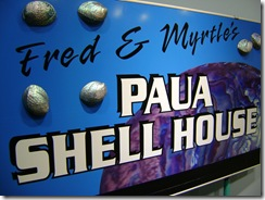 Paua Shell House
