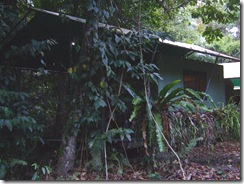 Safari Hut