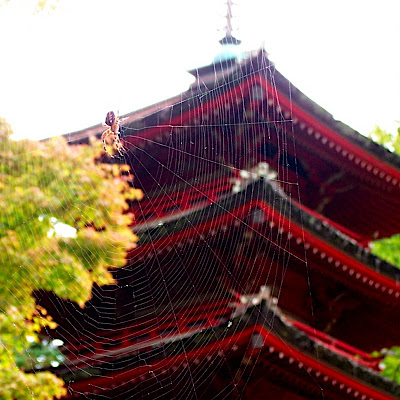 pagoda&spider2.jpg