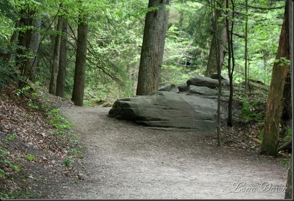 CedarFalls_Pathway