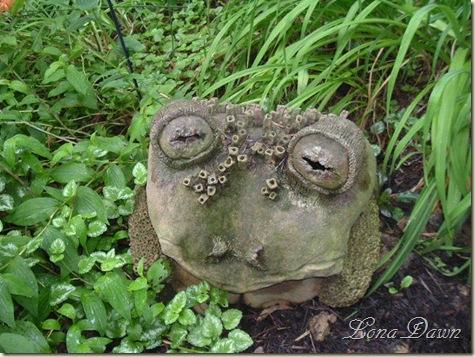 LilyFest_2008_Frog