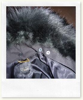 fur_coat 016