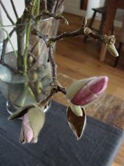 bloemen tot 2011 (20)