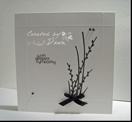 creative cardn12 may 09