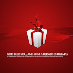 Christmas (28).jpg