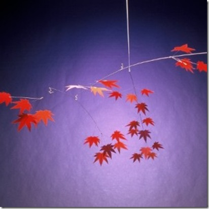 japanese maple 54 wide hang mobile gallery
