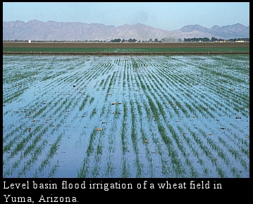 flood plain irrigation