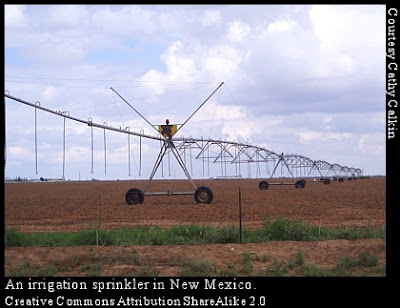 New Mexico irrigation