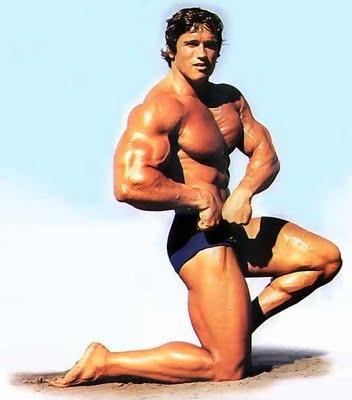 arnold schwarzenegger workout routine. arnold schwarzenegger workout