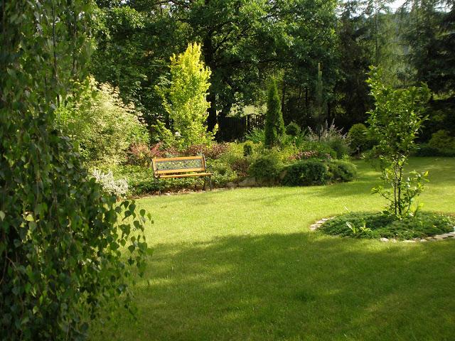 Ogród przy Szkółce STUS