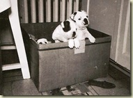 Patsy&Puppies1954-3