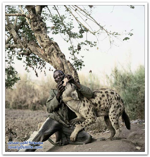 Unusual pets in Africa