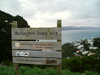 Wellington Town Belt