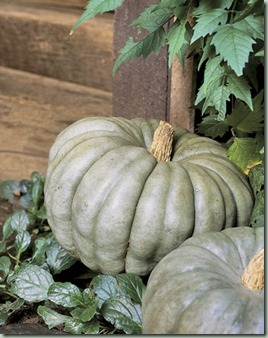 green blue pumpkins bhg