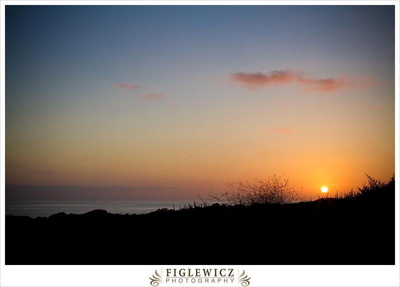FiglewiczPhotography_SanO_0004.jpg