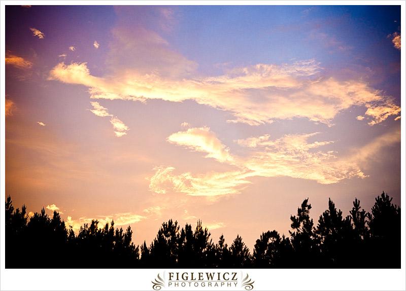 ShadyWagonRanch-FiglewiczPhotography-NorthCarolina-114.jpg