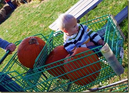 pumpkin23