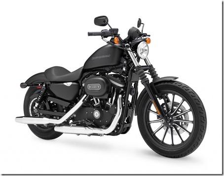 2011-Harley-Davidson-Sportster-Iron-8831
