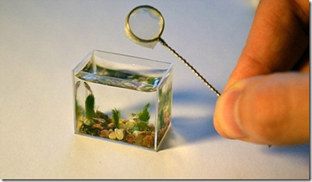 The World's Smallest Aquarium Tank 1
