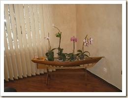 лодка с орхидеями
