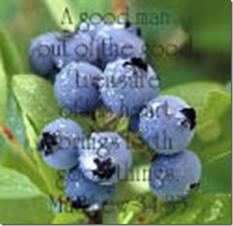 blueberries-1