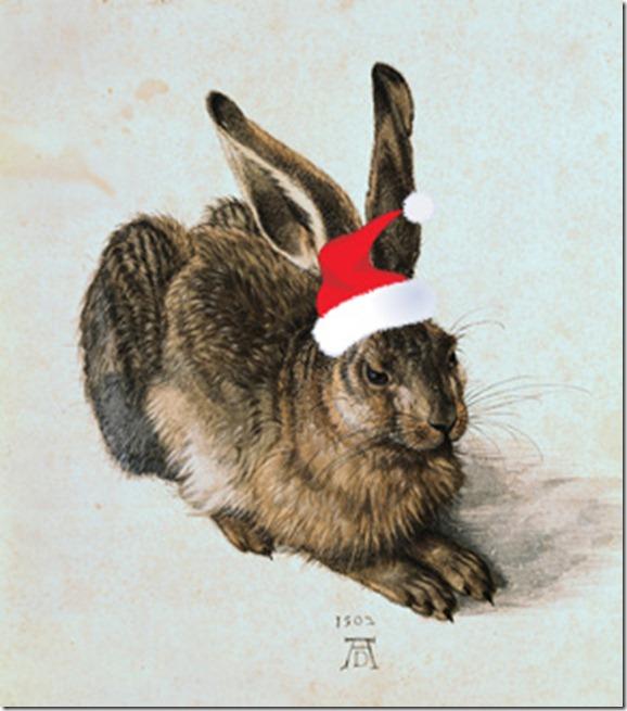 youg hare dürer 244583_320_art_R0-2