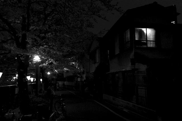 Shinjuku Mad - Lifelovers 20