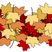 fall-leaves-white.png