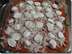 butternut squash lasagna uncooked